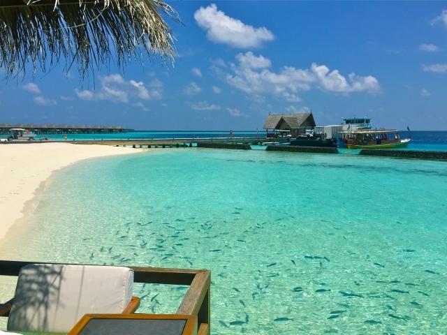 ケイマン諸島:「巨額損失隠し」...